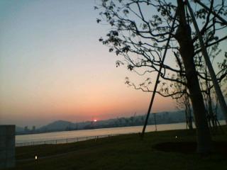 夕陽がぎらぎら
