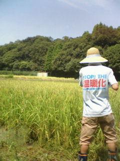 農作業に精を出す